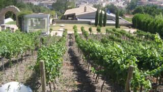 A Orsara il giardino delle coltivazioni rare