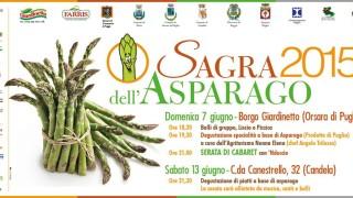 Sagra dell'Asparago e tanti eventi a Orsara