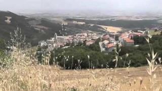 Sfilata di carri, stand e sapori: domenica tutti ad Alberona