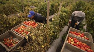 Lavoratori immigrati, a Foggia il sit-in per allungare la durata dei permessi di soggiorno