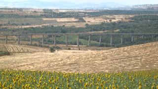 Il video numero 1000: 70mila euro per i giovani agricoltori