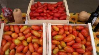 """Cia Agricoltori, Carrabba: """"Più azioni positive a sostegno delle aziende"""""""