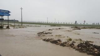 """A Orsara aziende agricole distrutte, il sindaco: """"E la Provincia è assente"""""""