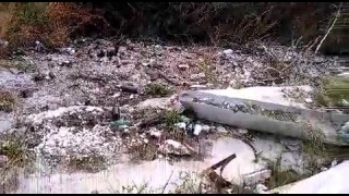 Vieste, turisti tra i rifiuti