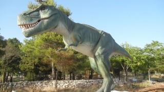 Ecco il Parco dei Dinosauri a 40 minuti da Foggia (foto)