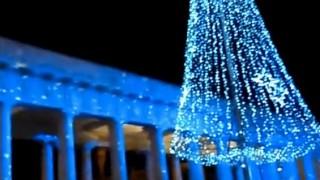 Natale a Foggia: a ingrassare si comincia già domani