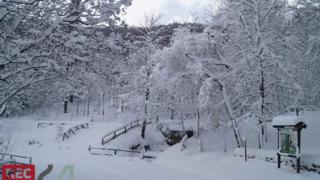 Neve in Capitanata: la fotogallery