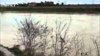 (video) Il Cervaro straripa, interrotta la SP75, allagamenti in tutta la zona