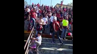 (video) Pisa-Foggia, tensione in tribuna e cori in curva