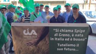 """Grano, proposta Cia Puglia """"Stop alle importazioni, pronti allo sciopero della semina"""""""