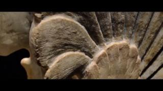 Ascoli Satriano in 58 secondi (video)