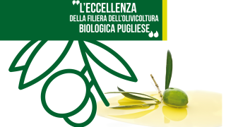 Olio Bio Tour, a Foggia show del gusto nel segno dell'oro verde