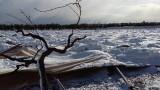 Cronache dalle terre sommerse: la diretta Cia Puglia sull'emergenza