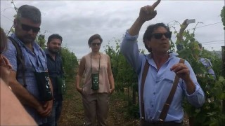 Ad Apricena il Gargano è un gusto, un vino…biodinamico