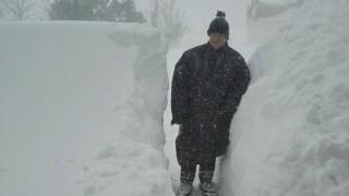 """(foto) Puglia al freddo e al gelo, la Cia: """"Agricoltura sottozero"""""""