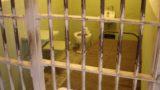 Foggia guida la protesta: in Puglia, sciopero della fame per 754 detenuti