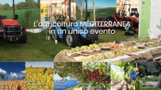 Agrilevante, in Puglia tutta l'agricoltura mediterranea