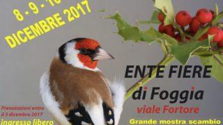 Carduelis, 8-9 e 10 dicembre in Fiera (ingresso libero)