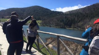 Troia, Biccari, Candela e Ascoli: in 500mila seguono la Pasqua sui Monti Dauni