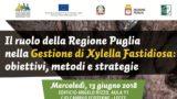 Xylella, a Lecce gli Stati Generali contro il batterio