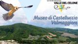 A Castelluccio Valmaggiore nasce il Museo Valle del Celone