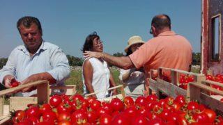 La FAO promuove la Puglia: un tesoro di biodiversità