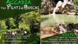 Accadia tra prati e boschi, l'escursione (il programma)