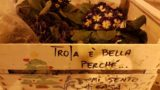 Troiano-italiano: Troia si regala il dizionario della sua musicalità