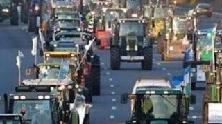 """Agricoltori pugliesi al Governo: """"Basta chiacchiere, ora i fatti"""". Lunedì la marcia dei trattori"""