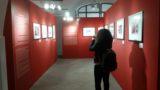 Medimex, i suoni e l'arte che hanno colorato Foggia